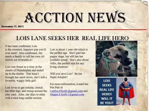 This just in....Lois Lane is in Philly!